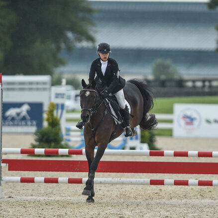 Read more about the article Connemara at American Eventing Championships