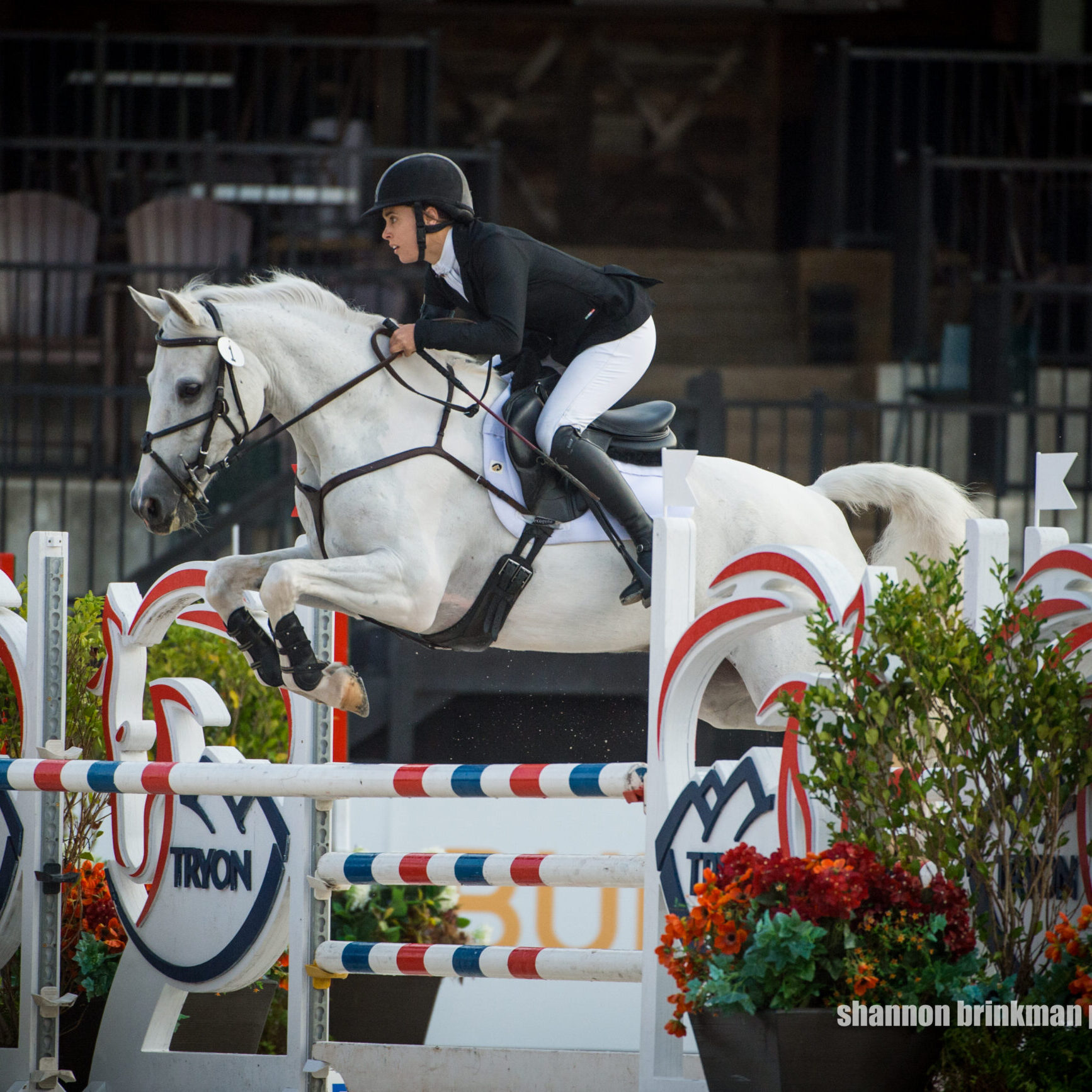 Read more about the article Devon Brown Dominates Both Open Preliminary Sections